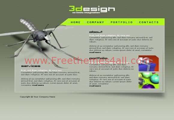 web design flash