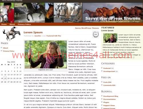 Free WordPress Horses Blog Web2.0 Theme Template