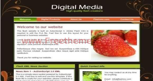 Free Flash Digital Media Company Web2.0 Template