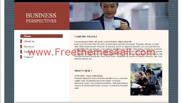 Free Flash Business Red Blue Template