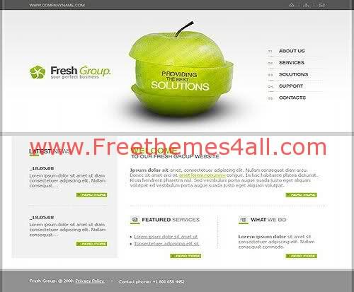 Free Flash Company Group Fresh Web2.0 Template
