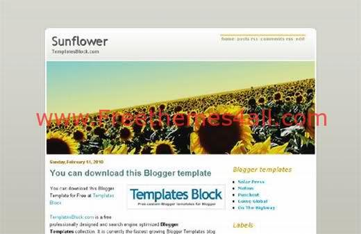 Free Blogger Sunflower White Template