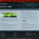 Business Red Blue Dark CSS Template