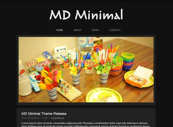 Art Photos Black Drupal Theme