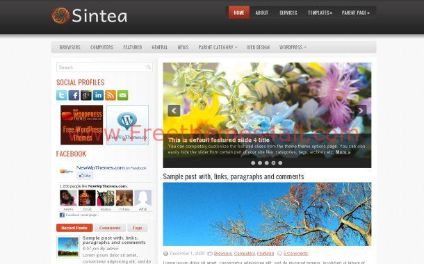 Silver Black WordPress Business Blog Theme