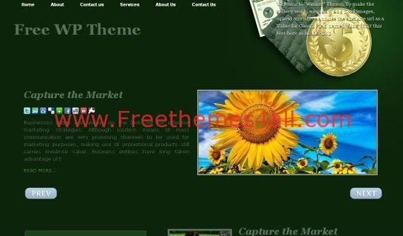 Free Online Money Adsense Green WordPress Theme