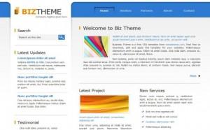 business-css-web-template.jpg