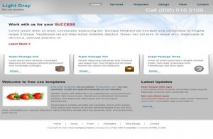 business-light-gray-css-template.jpg