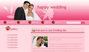 Abstract Wedding Dark Pink Website Template