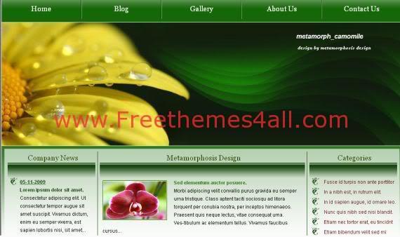 Free Nature Green Dark HTML Website Template
