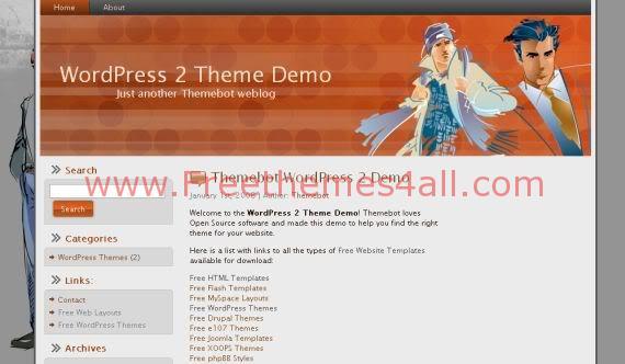 Free WordPress Men Fashion Web2.0 Theme