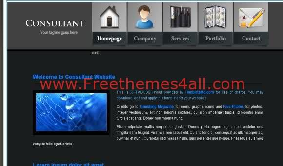 Free CSS Consulting Company Blog Web2.0 Template