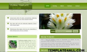 floral-nature-website-template.jpg