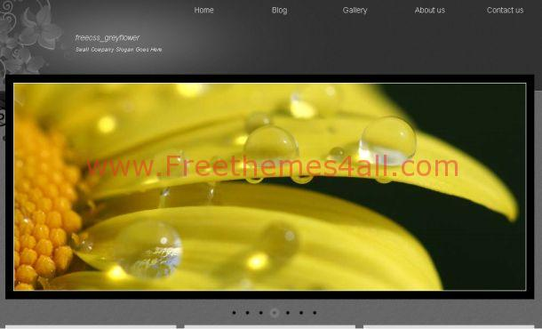 Free Dark Gray Natural HTML Website Template