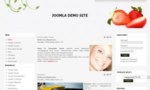 fresh_natural_joomla_template.jpg