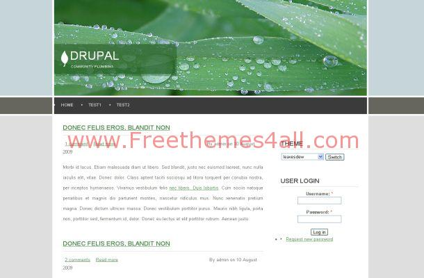 Free Drupal Green Leaves Nature Theme Template