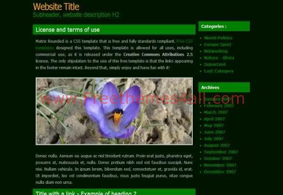 Free CSS Matrix Black Green Website Template