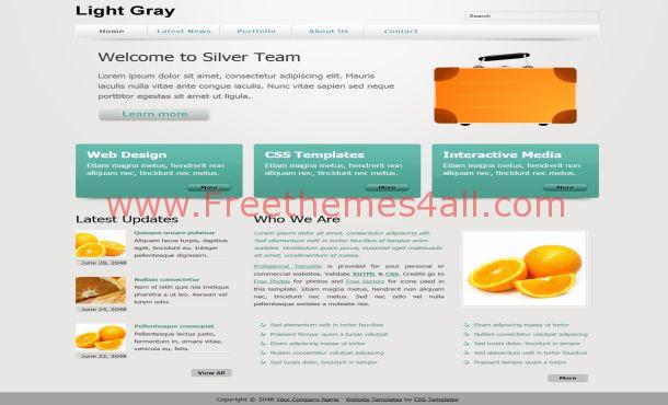 Gray Business CSS Template