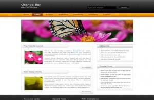 Business Black Orange CSS Template