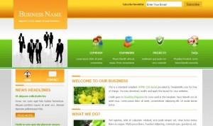orange-business-template.jpg
