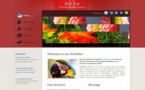 red-gray-css-web-template.jpg