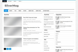 Free Light Silver Magazine Wordpress Theme