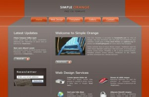 Orange Grey Simple CSS Template
