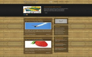 woode-strip-css-website-template.jpg