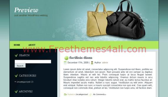 Free WordPress Fashion Bags Shop Theme