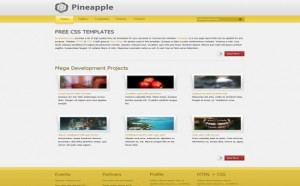 yellow-grey-business-css-template.jpg