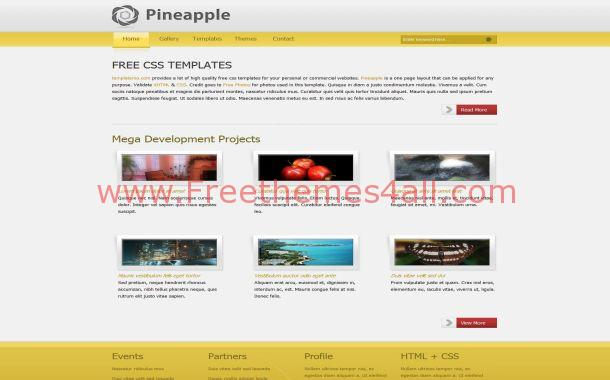 Yellow Grey Business Free CSS Website Template
