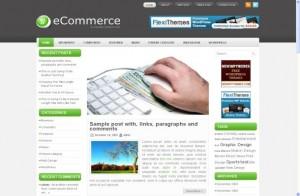 Business Ecommerce Wordpress Theme