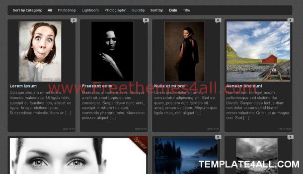 Black Gray Wordpress Gallery Theme Template