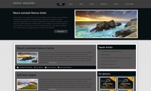 Free Photos Gallery Gray Black Wordpress Theme