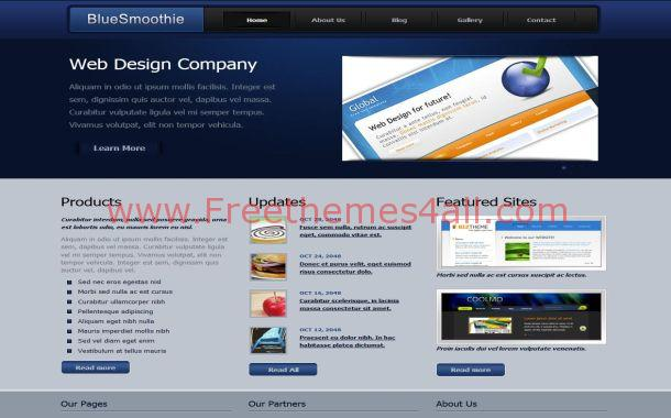 Business Blue CSS Website Template