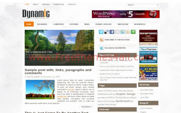 Dynamic Orange Chrome Free WordPress Theme