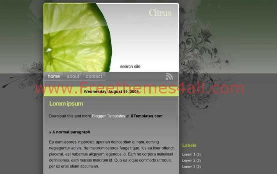 Citrus Dark Green Lime Blogger Template