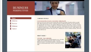 Business Blue Gray Flash Template