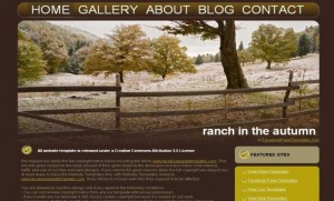 Brown Grunge Forest Free CSS Template