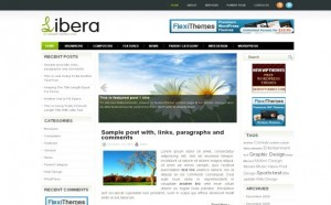 Free White Green Jquery WordPress Theme