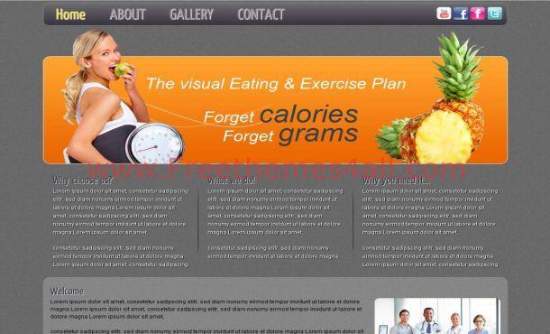 Free Orange Chocolate Health CSS Template