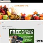 Free Restaurant Recipes Joomla Theme