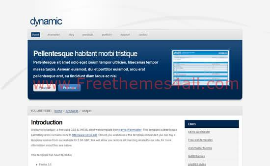 Dynamic Blue White CSS Template Download