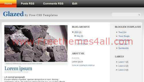 Free Blogger Gray Photography Web2.0 Template