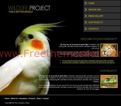 Black Free Nature Website Template