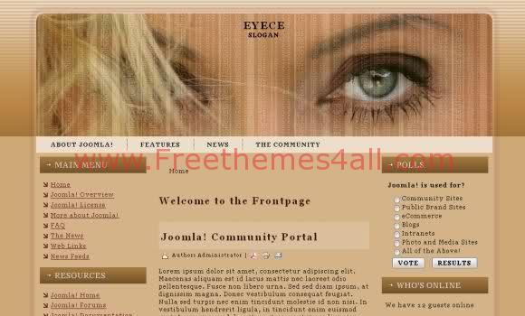 Eyes Brown Joomla 1.5 Template