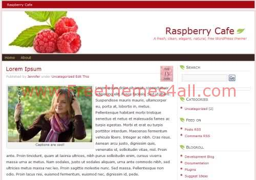 Free Berry Cafe White Web2.0 WordPress Theme