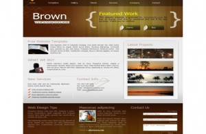 Portfolio Brown CSS Template