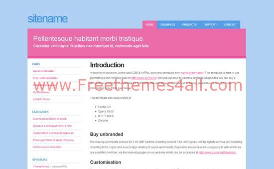 Pink Blue White Blog CSS Website Template