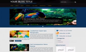 black_wordpress_theme.jpg